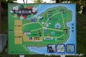 青森県 むつ市早掛沼公園